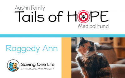 Raggedy Ann's Story – Tails of HOPE